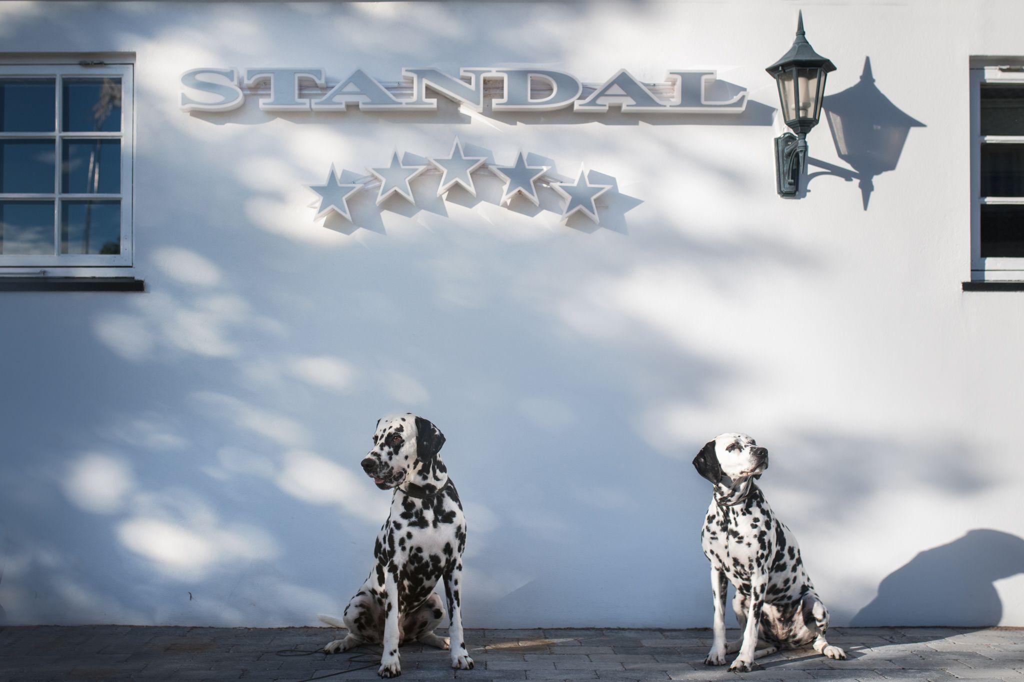 Standal